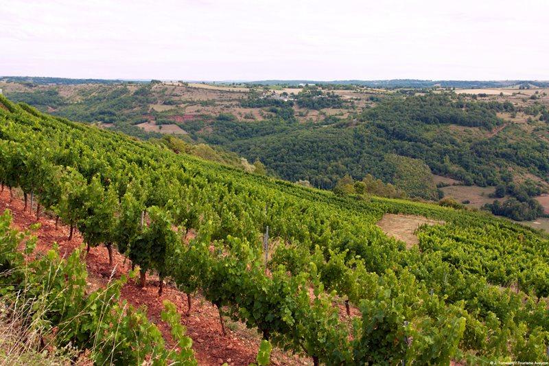 Marcillac wijngaarden