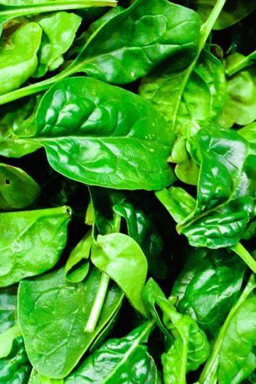frisse groene spinazie