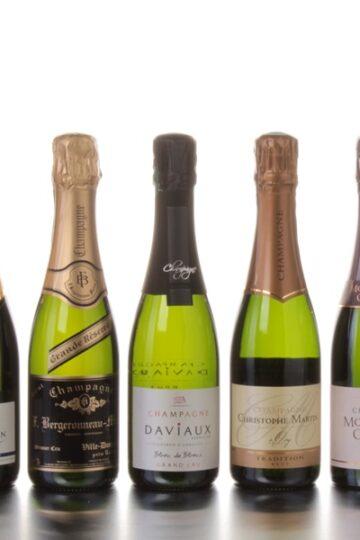 Champagne Gabriel Pagin, Bergeronneau Marion, Sebastien Daviaux, Christophe Martin en Moyat Jaury Guilbaud 375 ml